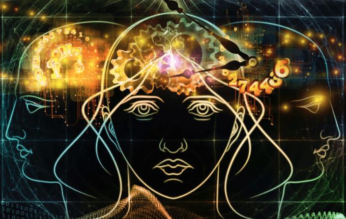 brain function quiz