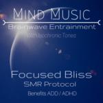 Focused Bliss