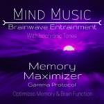 Memory Maximizer