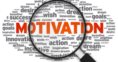 How motivation really works